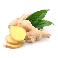 Fresh Ginger Root (Whole)